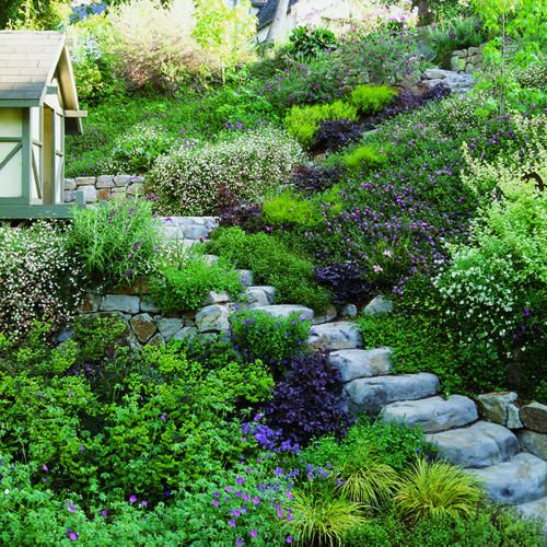 Garden Design On Steep Slopes solutions: slope success | landscaping, gardens and erosion control