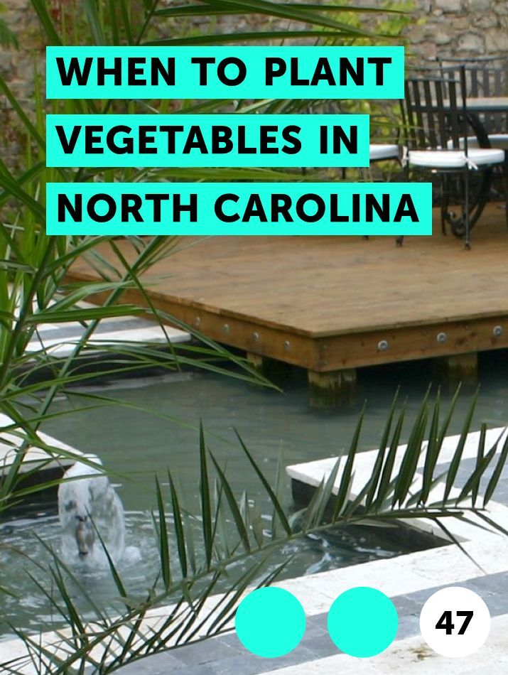 When To Plant Vegetables In North Carolina When To Plant 400 x 300