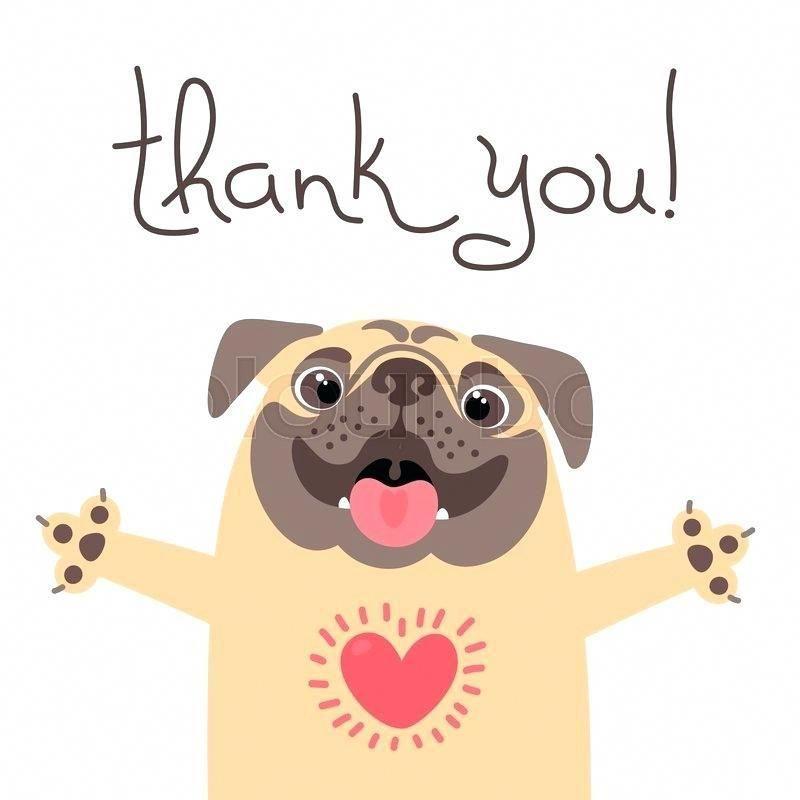 Thank You Pug Pug Illustration Pug Cartoon Cute Dogs