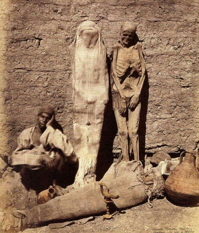 Mummy seller in egypt 1865 !