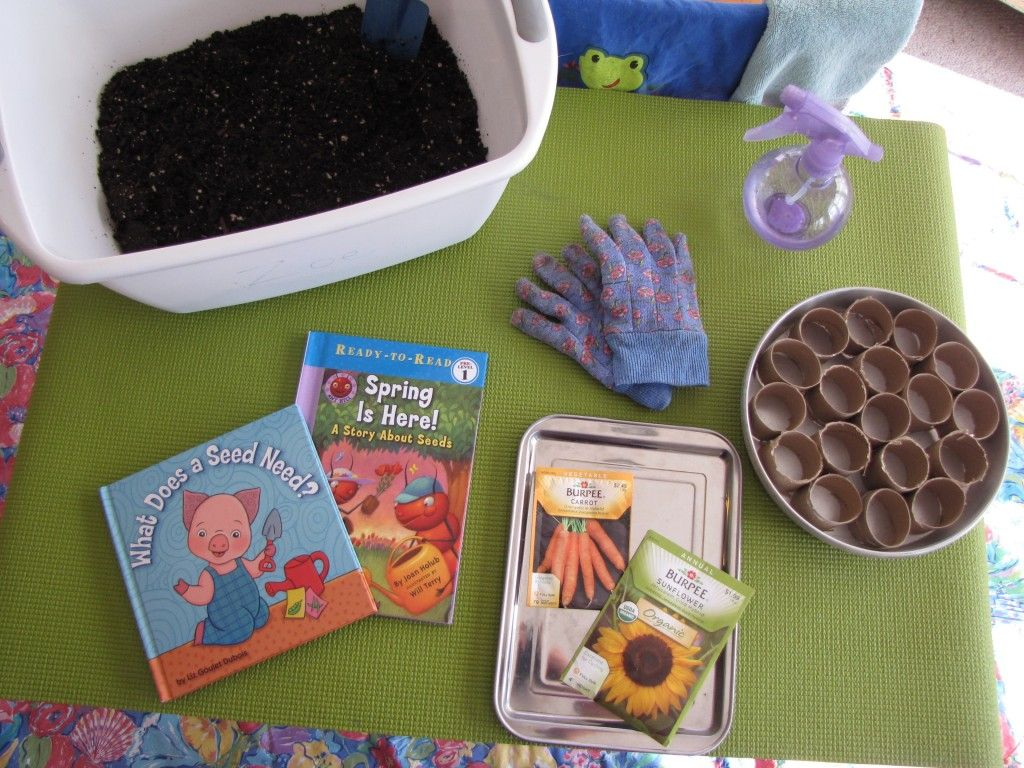 High trees garden centre  Planting Seeds With Preschoolers  Planting Plants and Gardens