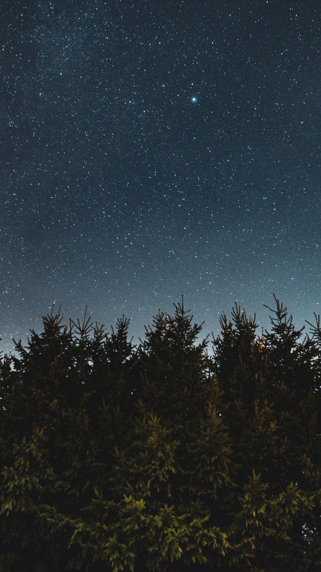 Nature Starry Sky Trees Night 1080x1920 Wallpaper Night Sky Wallpaper Galaxies Wallpaper Night Sky Photography