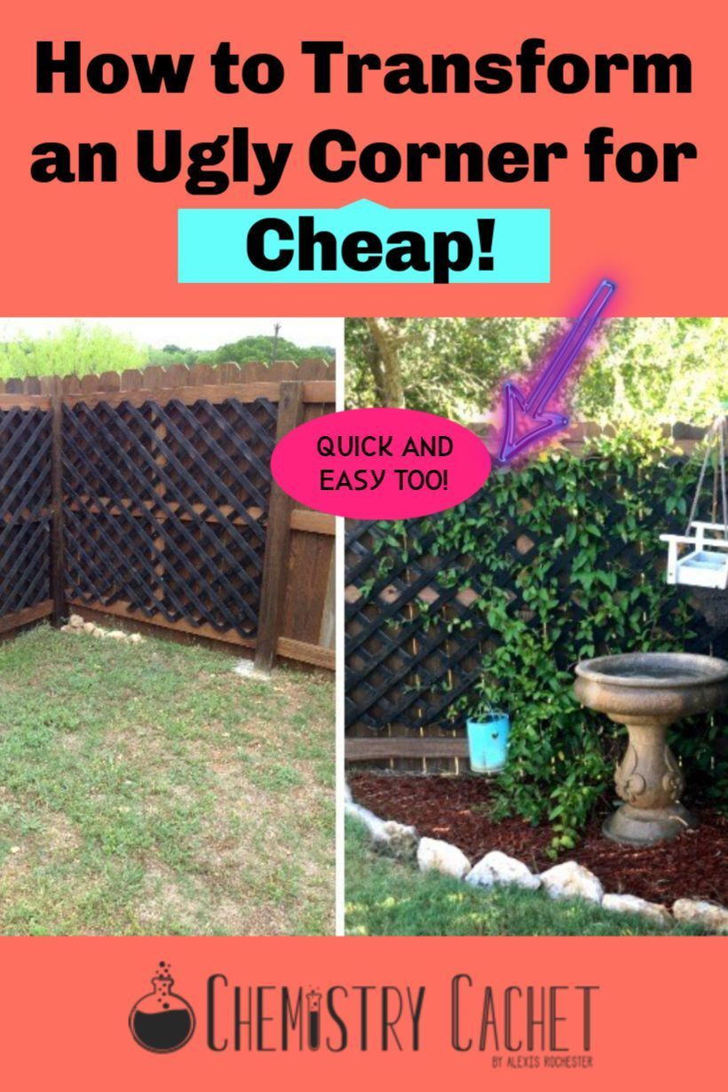 How To Transform A Boring Backyard Corner For Little Money Easy Backyard Landscaping Small Backyard Landscaping Corner Landscaping