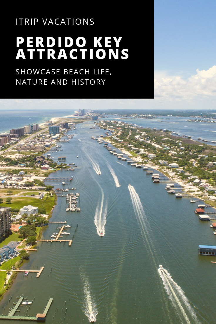 Perdido Key Attractions Showcase Beach Life, Nature and