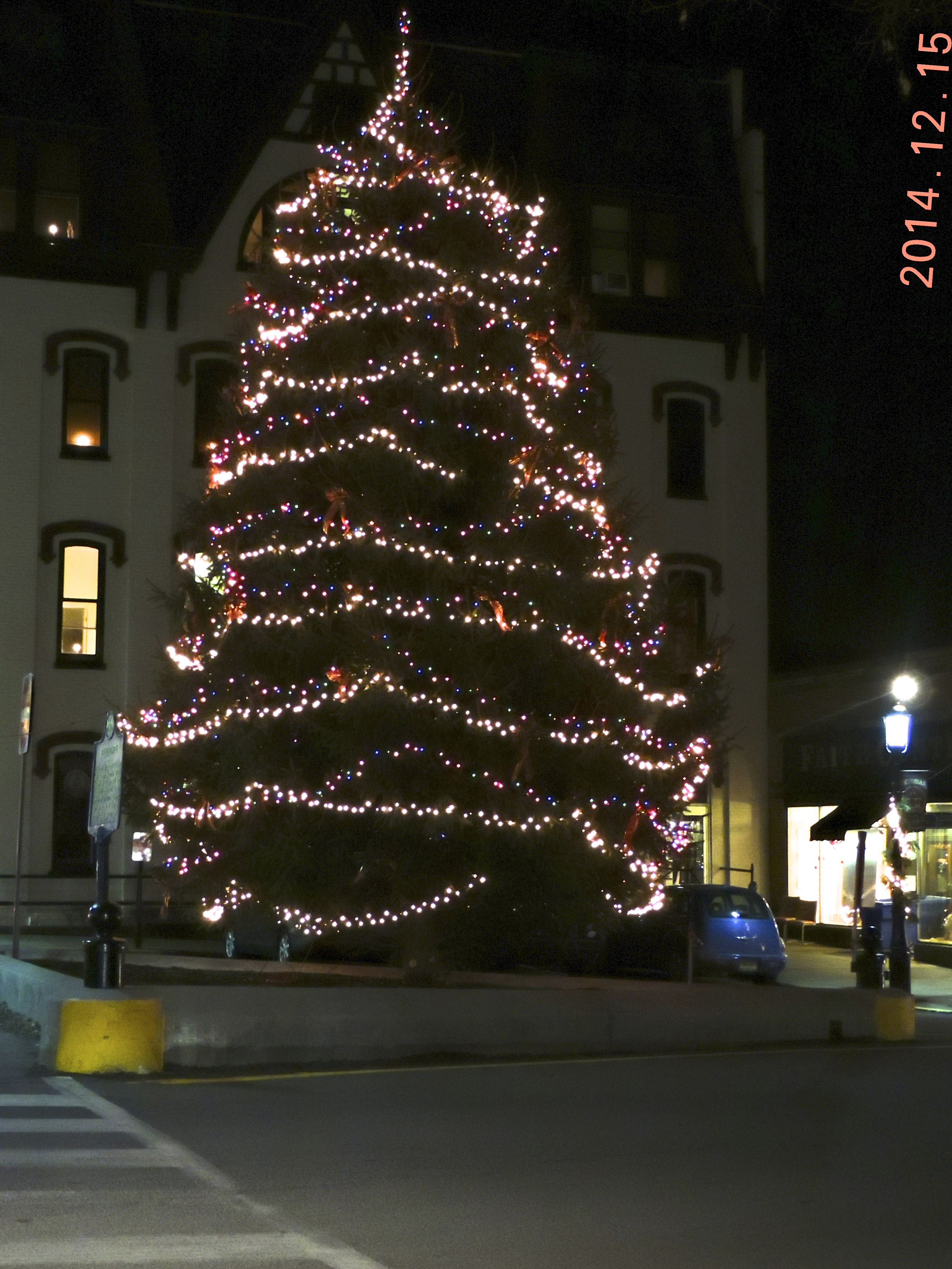 Christmas Tree In The Center Of Town, Bellefonte, Pa