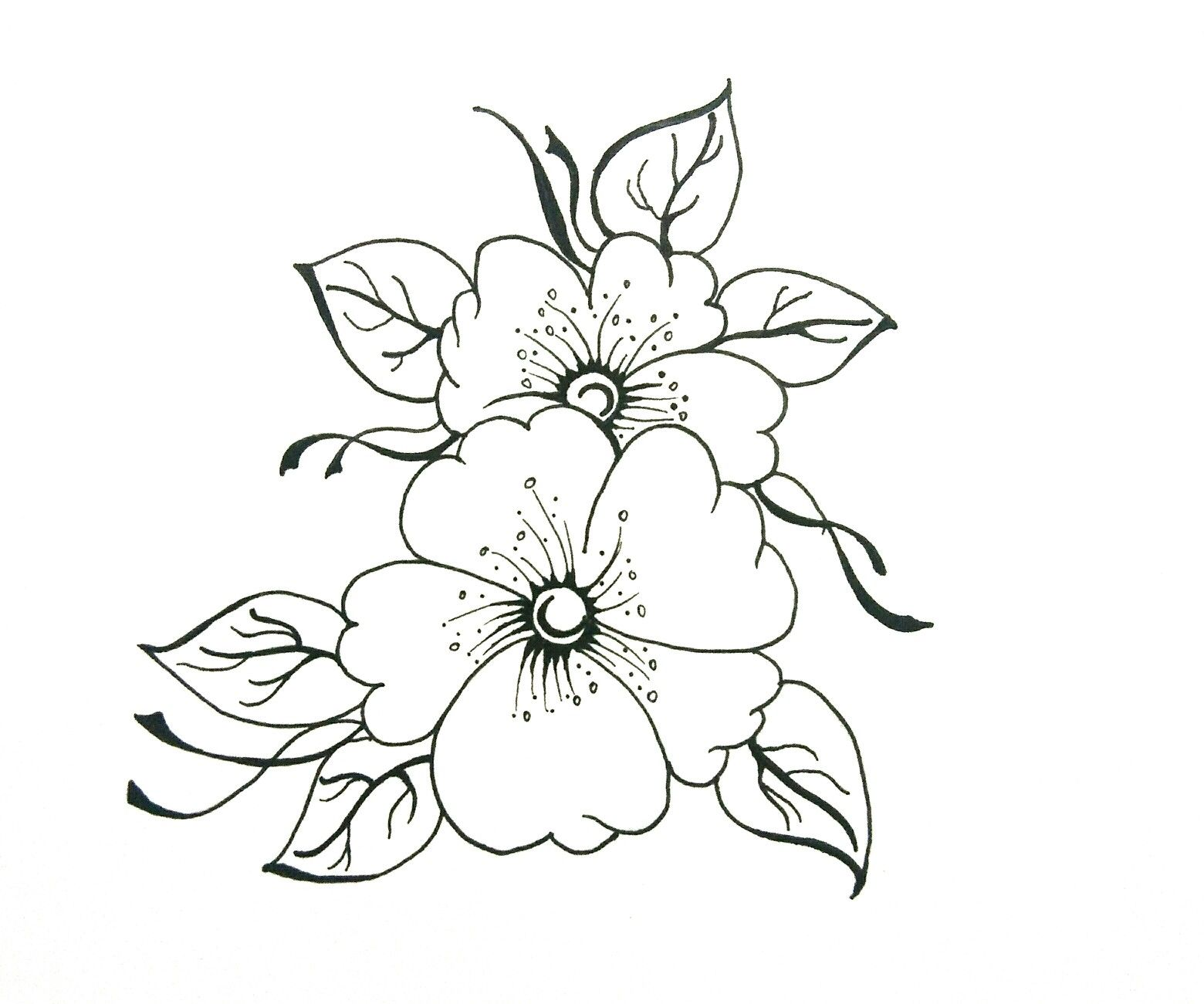 Easy Flower Drawing Do It Yourself Easy Flower Drawings