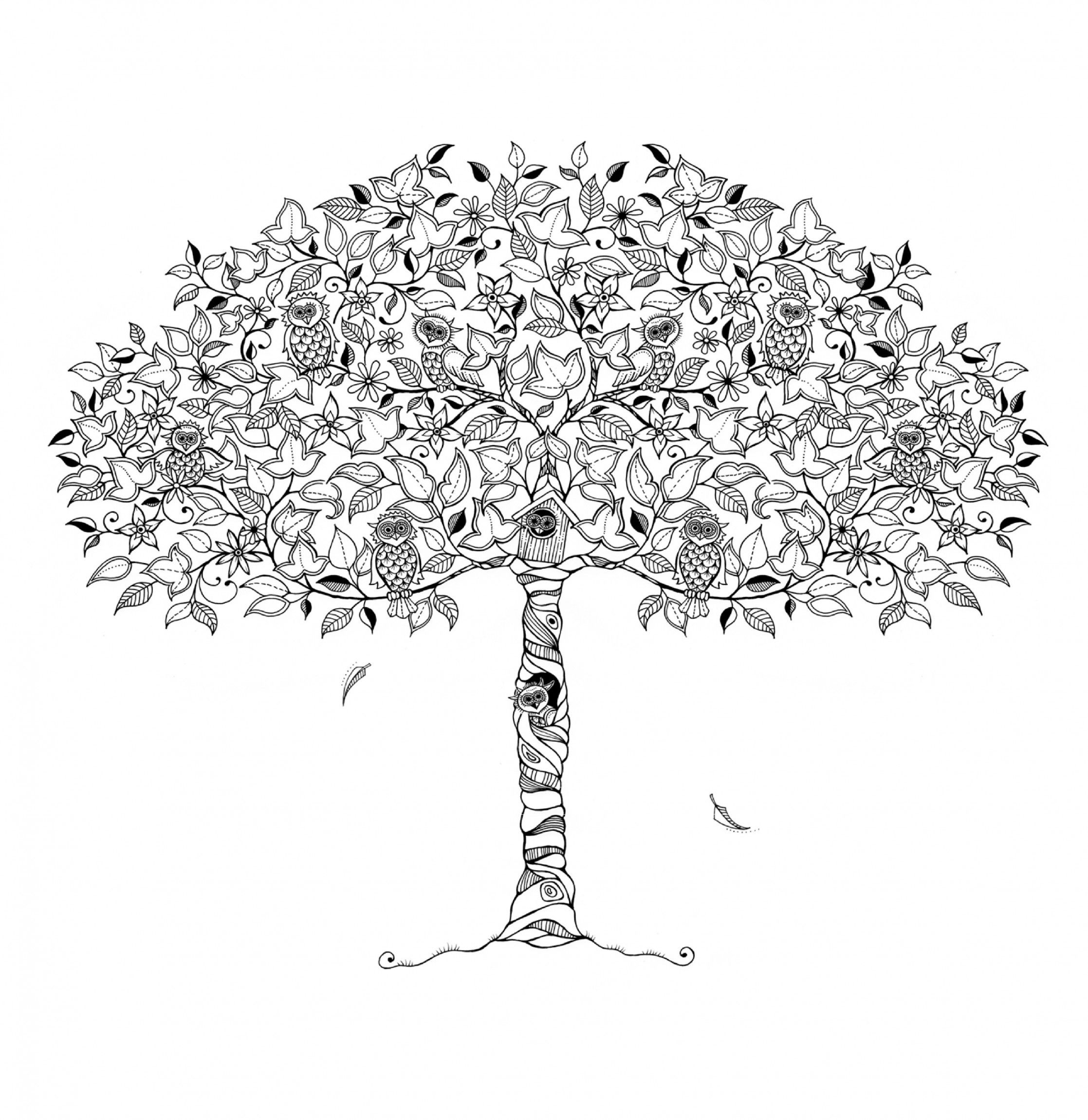 We've got a free download from Secret Garden Artist's Edition: A Pull-