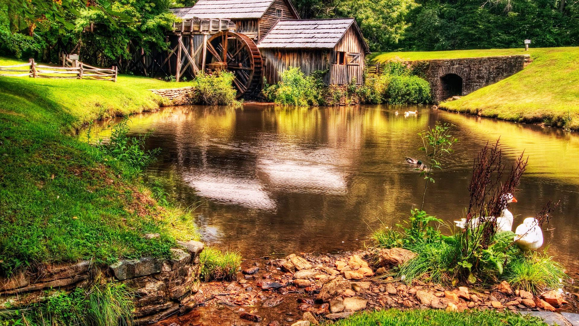Beautiful Farm Lake Cottage Ducks Wallpapers Landscape