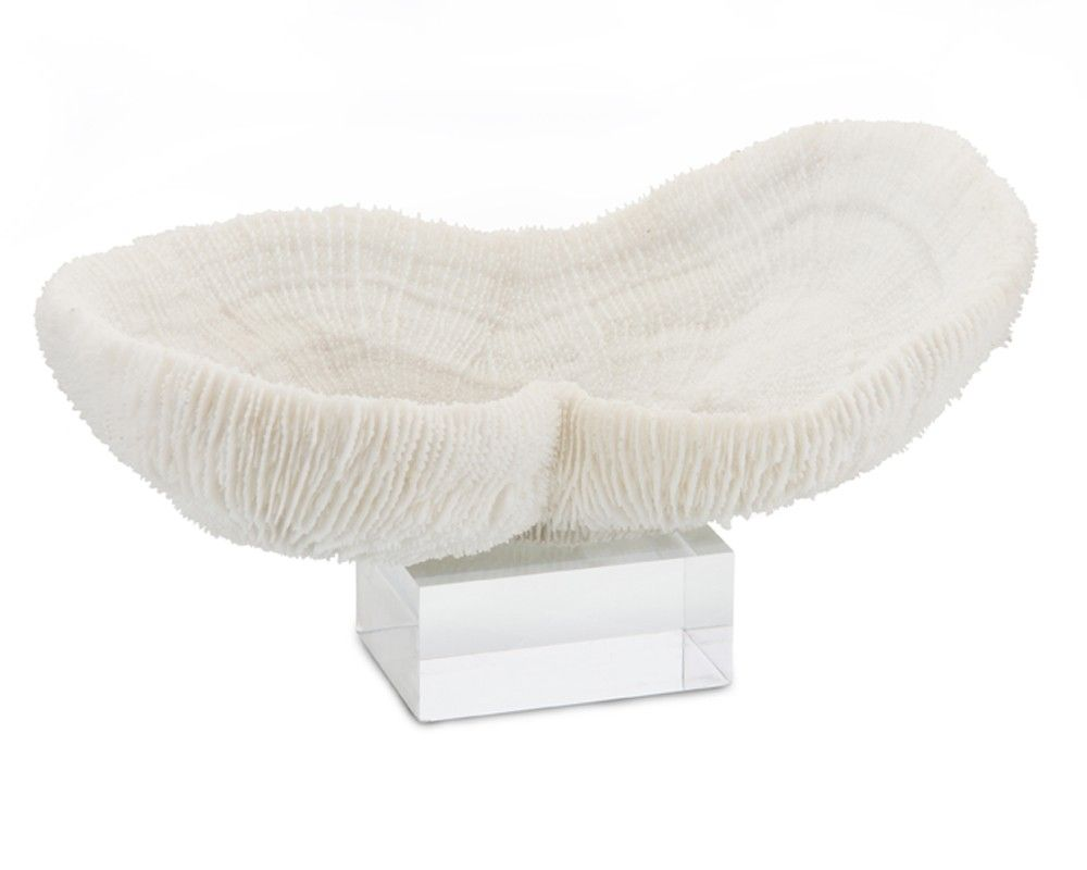 Eco-Friendly Brain Coral Bowl - Accessories - Accessories & Botanicals - Our Products