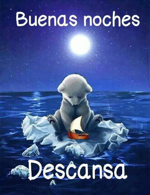 Osito Descansa Buenas Noches Descansa Postales De Buenas Noches Buenas Noches