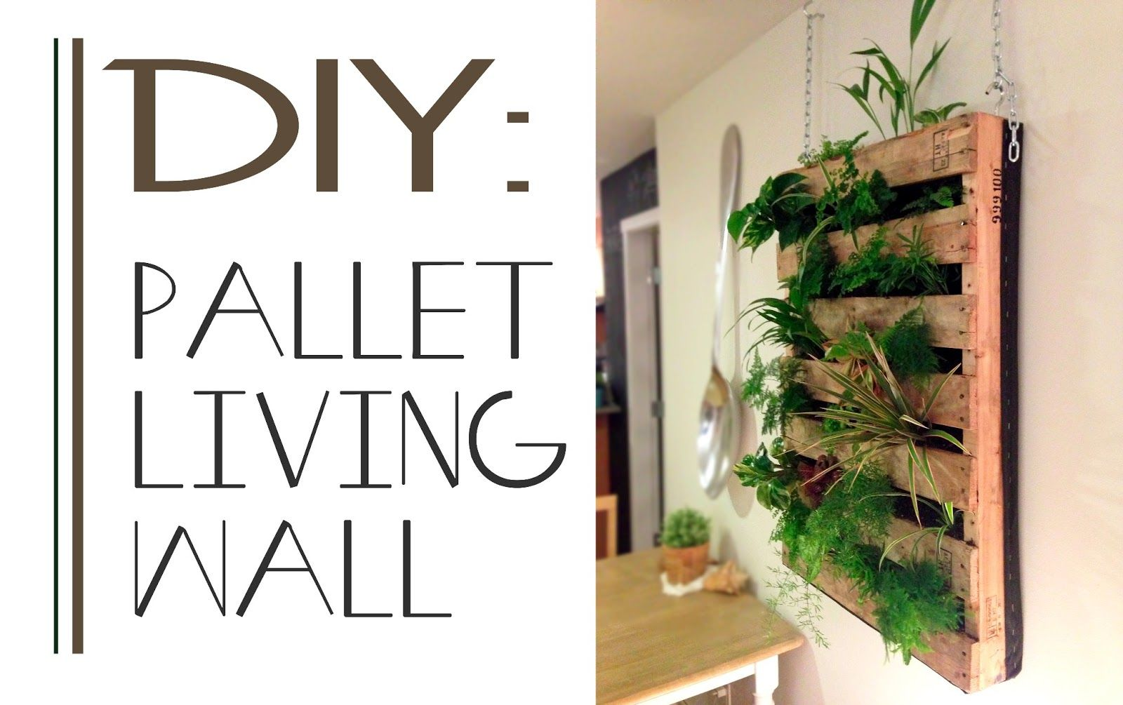 Good The Brew : DIY Pallet Living Wall Excellent For Planting Herbs Or Maybe  Small Fruit Plants Like Strawberries?