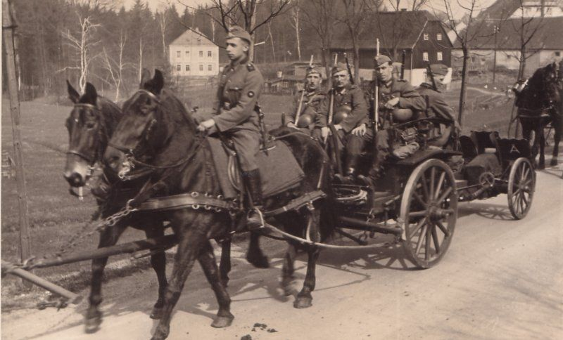 Image result for ww2 german horse drawn artillery