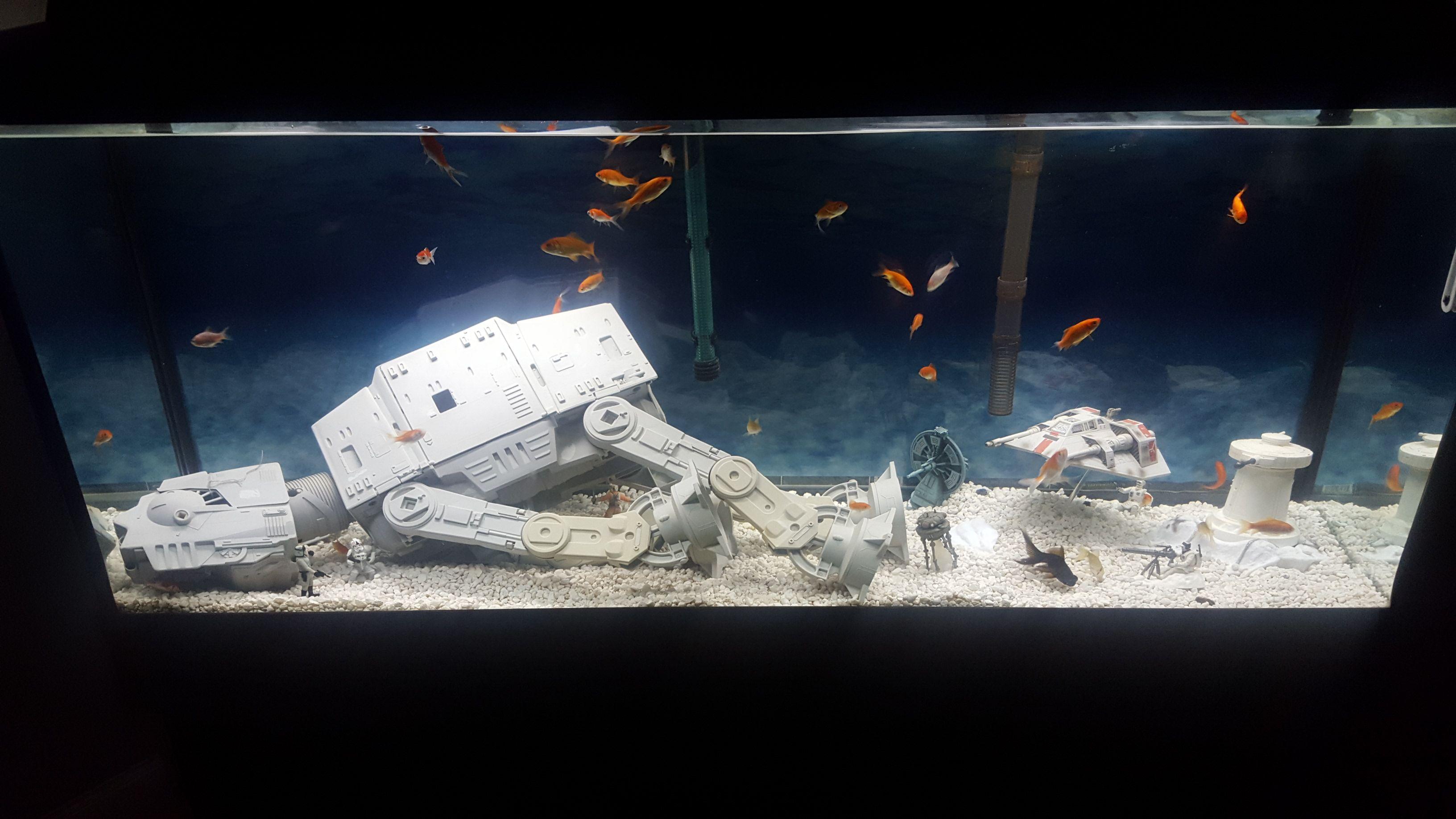 Imgur Post Imgur Fish Tank Diy Fish Tank Fish Tank Decorations