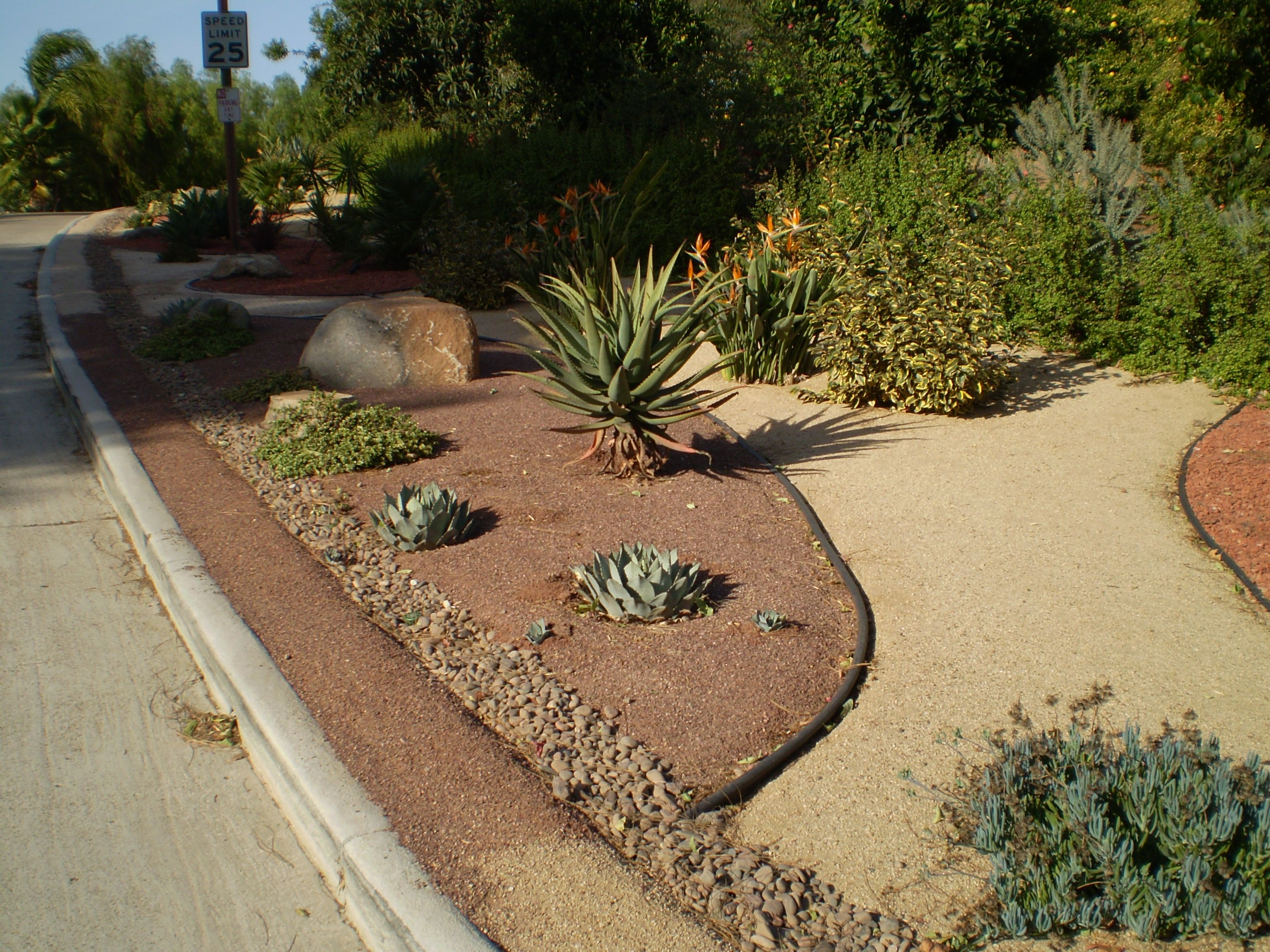 How To Install A Decomposed Granite Pathway Water Wise