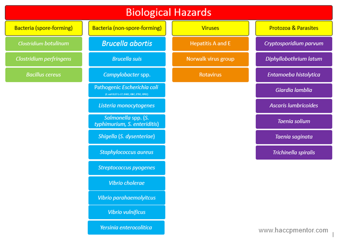 Examples of different biological hazards that could happen in your food products