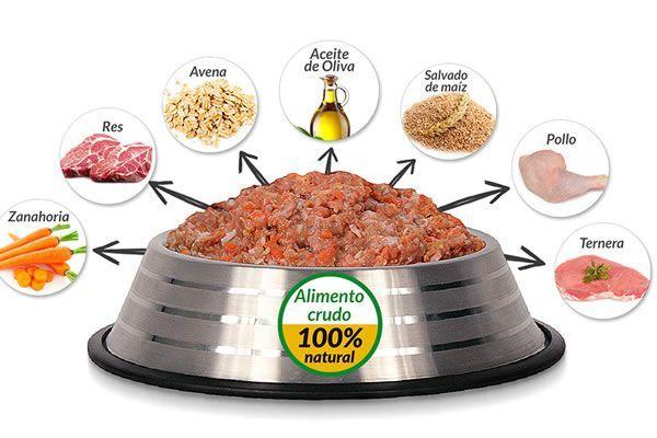 Cocina Casera Para Perros Cinco Recetas Rapidas Saludables Y