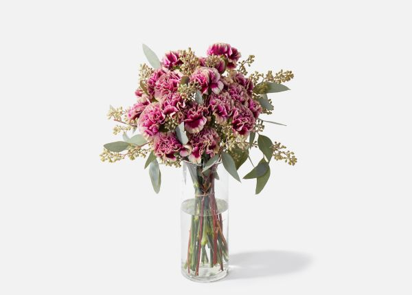 UrbanStems Flower Delivery Flowers today, Order flowers