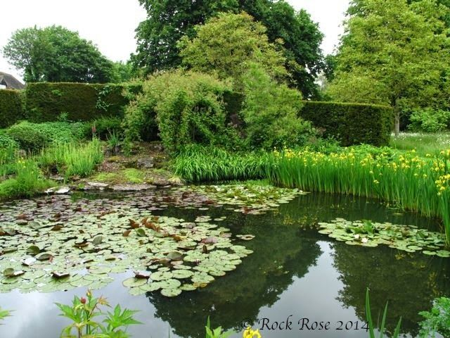 ROCK ROSE: HOW THE MANOR HOUSE AT UPTON GREY MADE ME THINK ...
