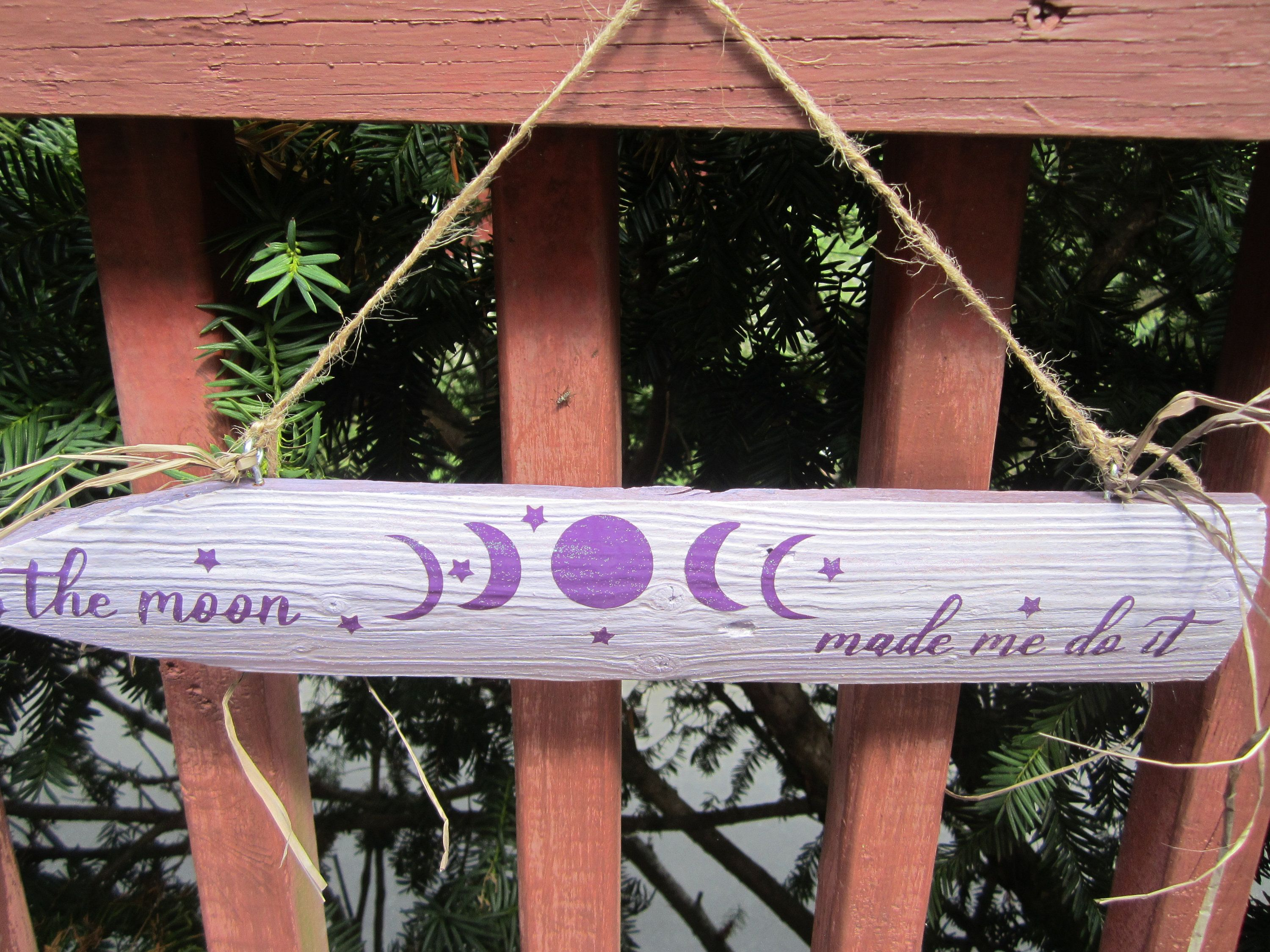 Wooden Moon Hanging Sign, Wiccan Decor, The Moon Made Me Do It Sign, Purple Moon Sign for Altar, Wiccan Sign, Altar Decor, Home Decor Sign #wiccandecor