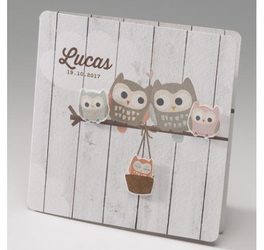 Très hibou sur bois | jolis faire-parts de naissance | Pinterest | Bois  DX53