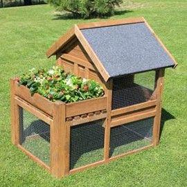 poulailler lucky 2 3 poules carr potager jardin pinterest carr potager poulaillers. Black Bedroom Furniture Sets. Home Design Ideas