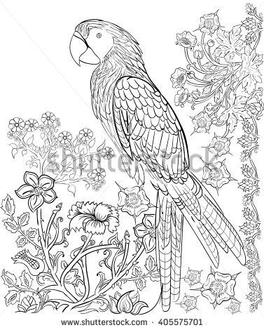 ink pattern coloring book coloring for