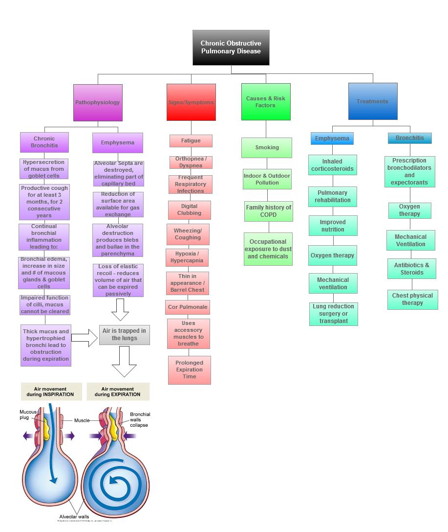 COPD concept map | Nursing | Concept map nursing, Pharmacology