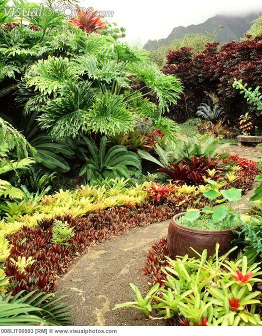 Garden of Leyland Myano(hawaiian landscape designer
