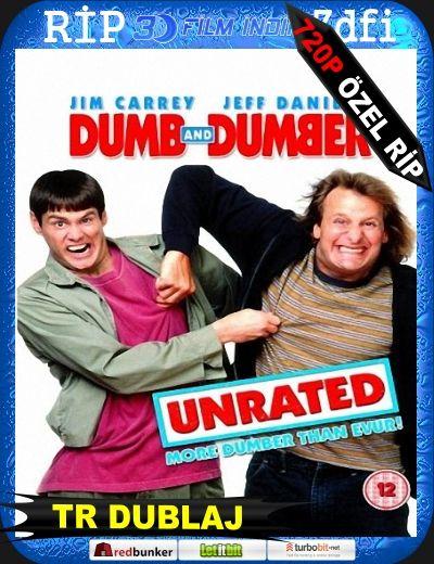 Dumb Dumber Salak Ile Avanak 1 1994 Bluray M720p Türkçe Dublaj