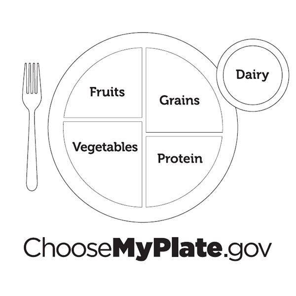 WhatS In Your Lunch Using The Myplate Model  PreK And K Lesson