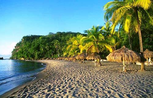 Anse Chastanet Beach St Lucia
