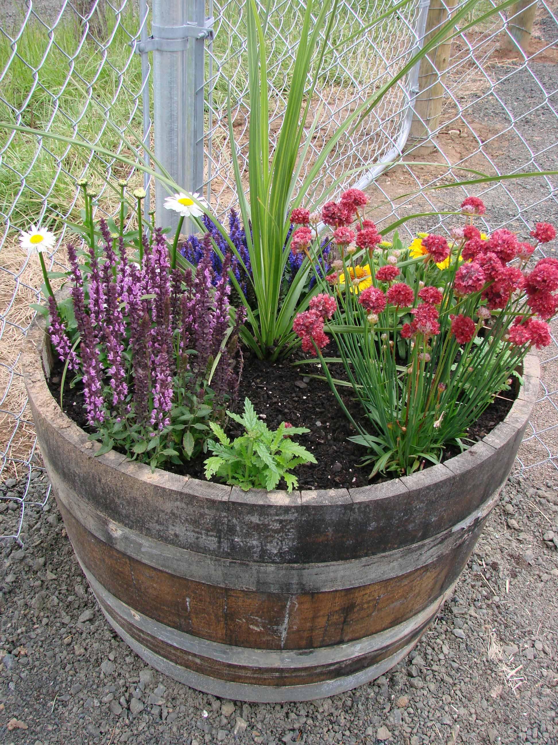 Whiskey Barrel Flower Pots | Tyres2c
