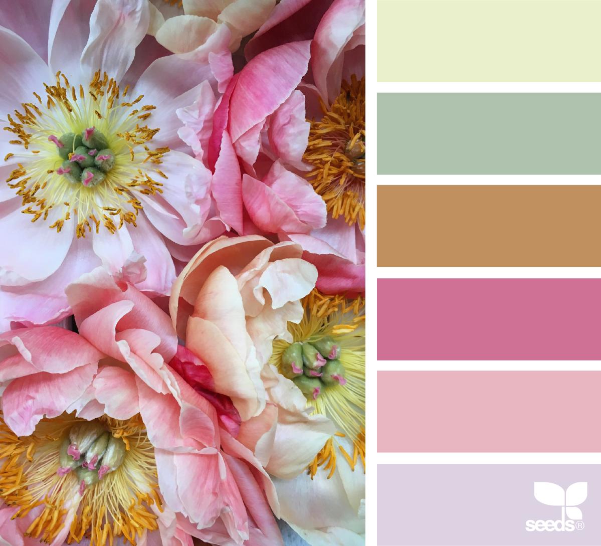 Charmed Flora | Flora, Design seeds and Inspiration