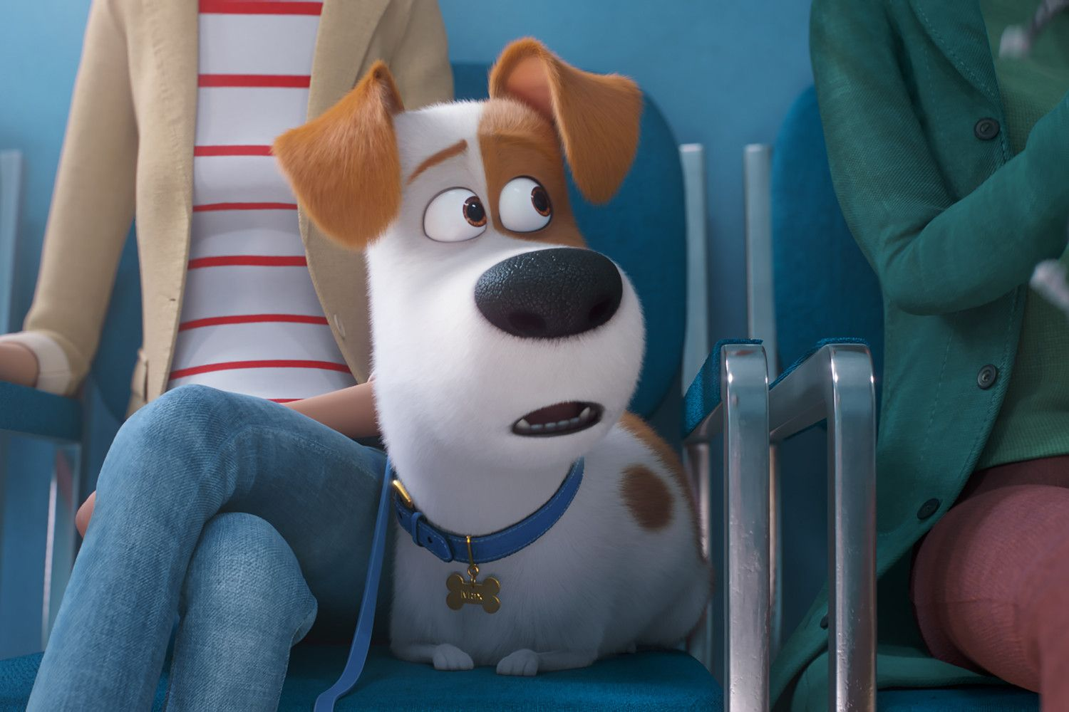 Watch Now Http Www Worldmovieshd Com Download Now Http Www Worldmovieshd Com The Secret Life Of With Images Secret Life Of Pets Dog Movies Animated Movies
