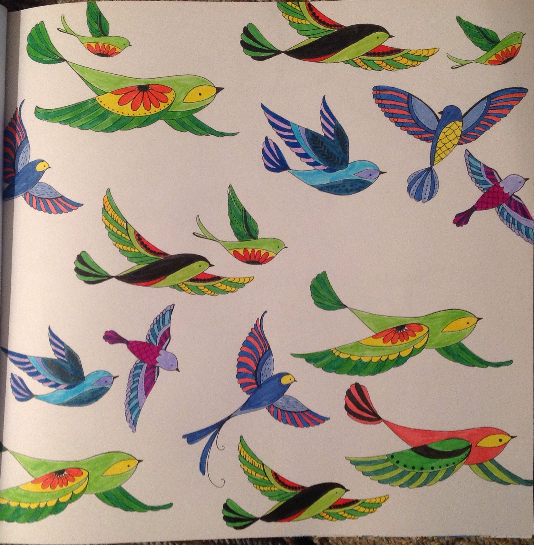 Image Result For Birds And Blooms Coloring Book