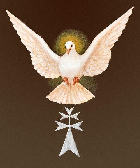 Pin De Mariah Cruz En Figuras Y Animales Espíritu Santo Imagenes
