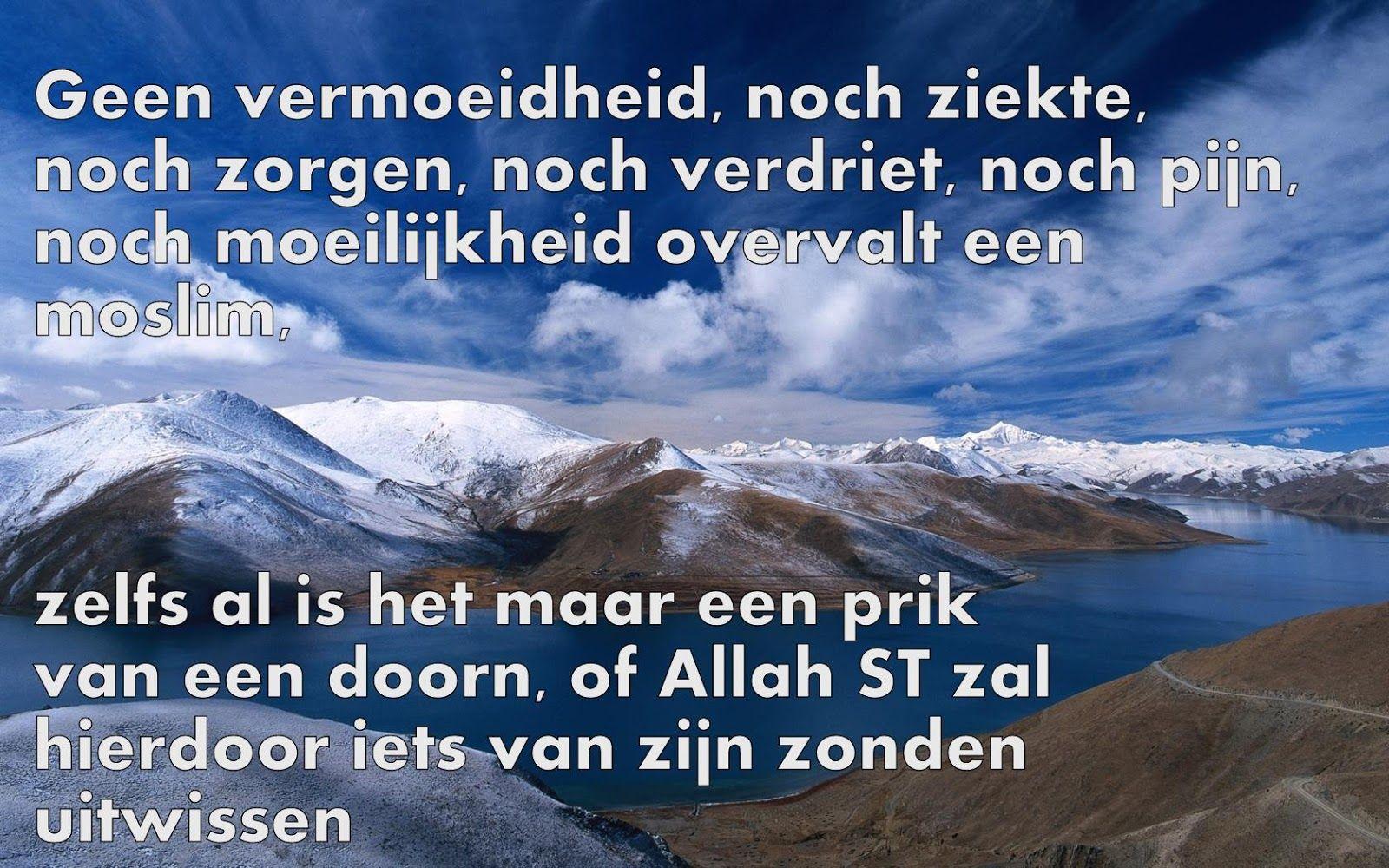 Citaten Quran : Citaten en wijze woorden uit de islam nederlandse quotes