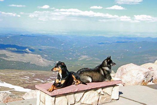 Love Mt. Evans, Colorado