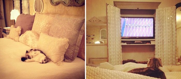 Taylor Swift's Bedroom