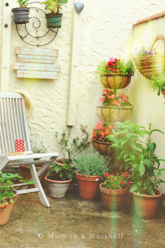 Quick tips to create a shady courtyard garden | Garden mum ...