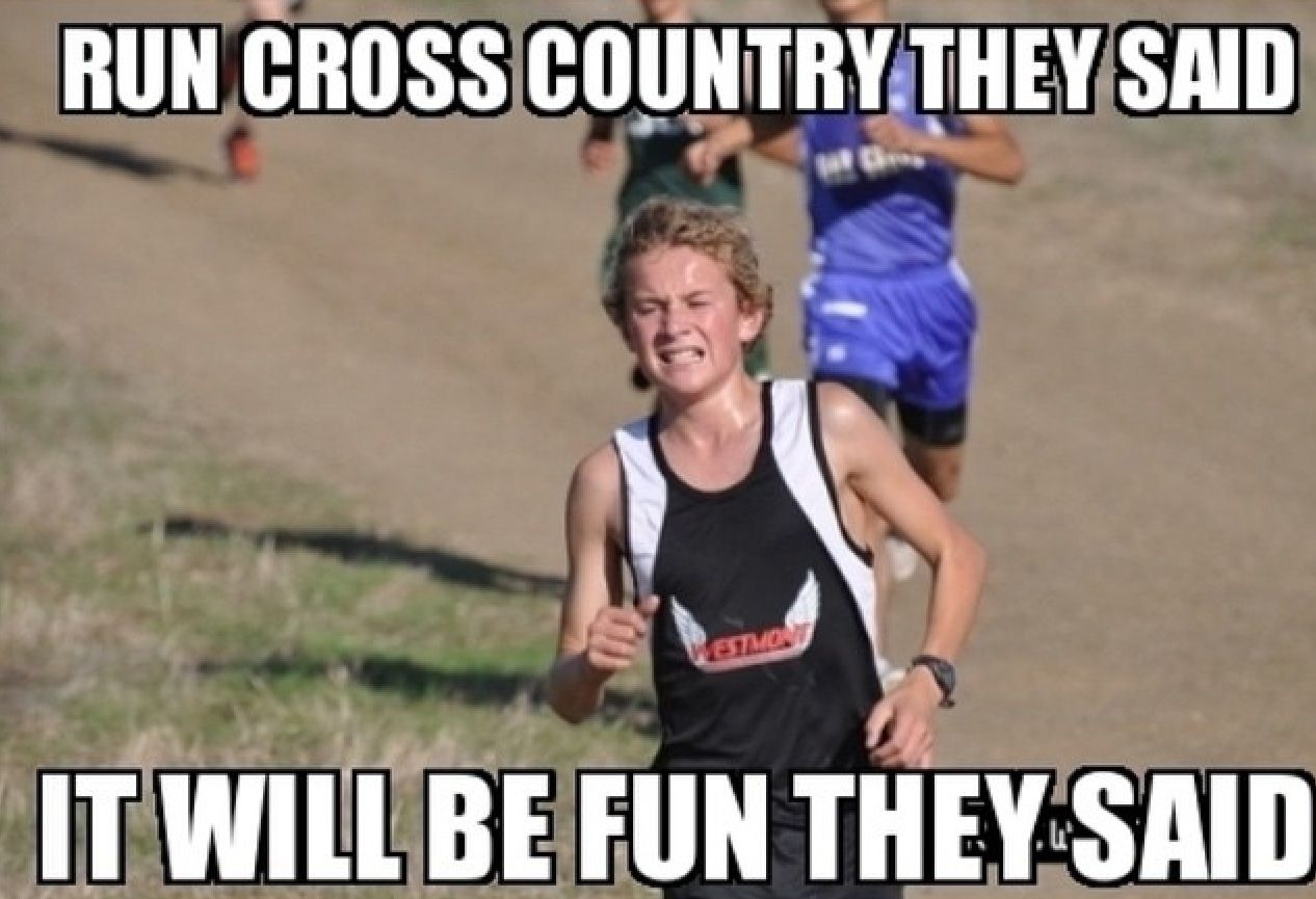 Pin By Carolyn G On Running Xd Cross Country Quotes Cross Country Memes High School Cross Country