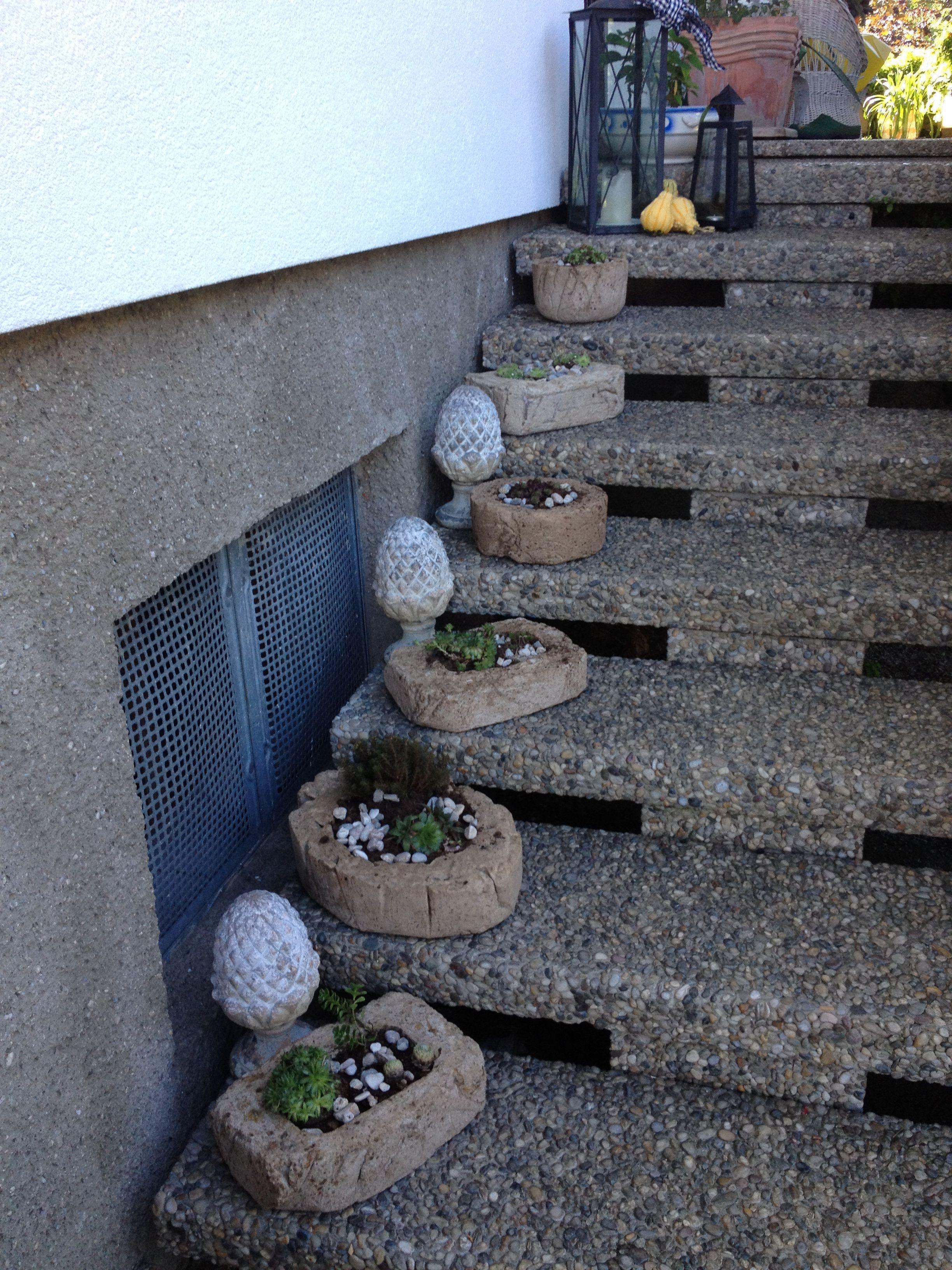 selbstgemachte blument pfe aus beton torfmischung garden. Black Bedroom Furniture Sets. Home Design Ideas
