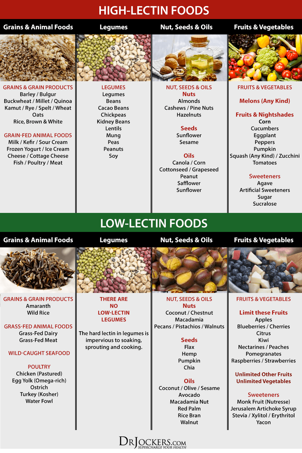 Lectin List Of Food