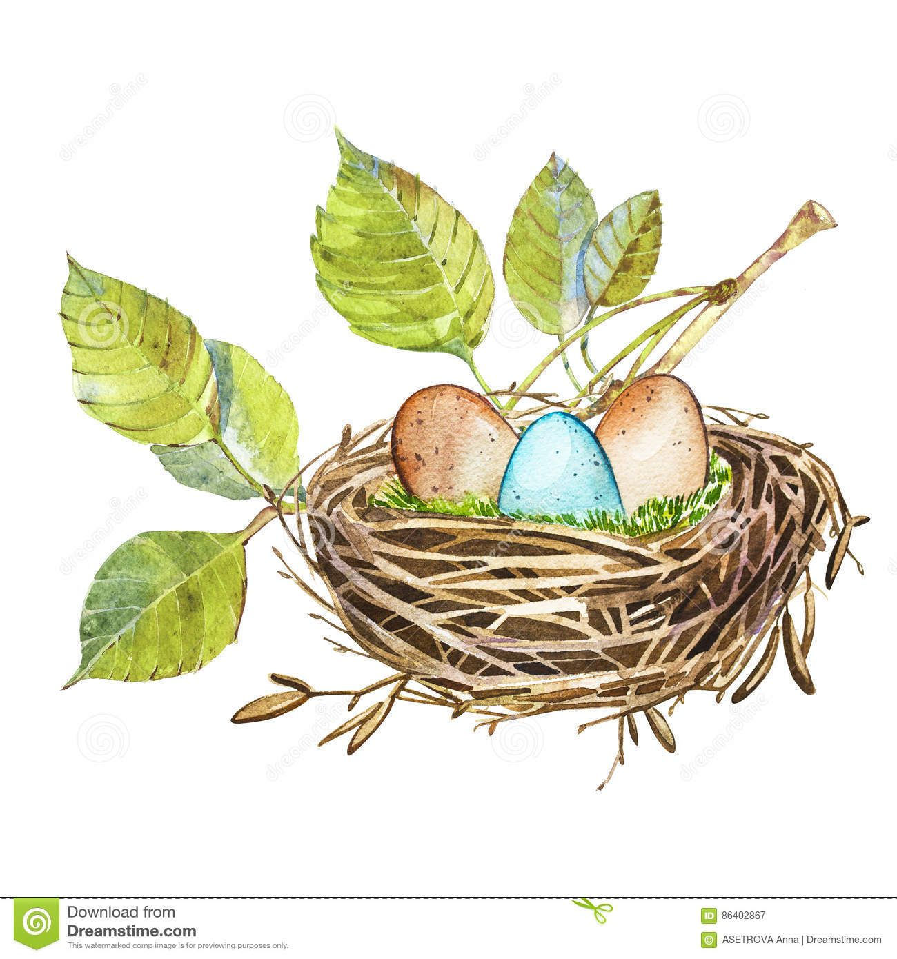 Hand Drawn Watercolor Art Bird Nest With Eggs Easter Design
