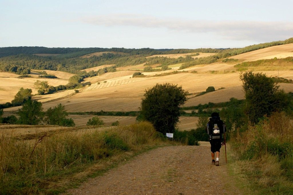 El Camino del Santiago in Spain.  This is more of a pilgrimage than just a hike.