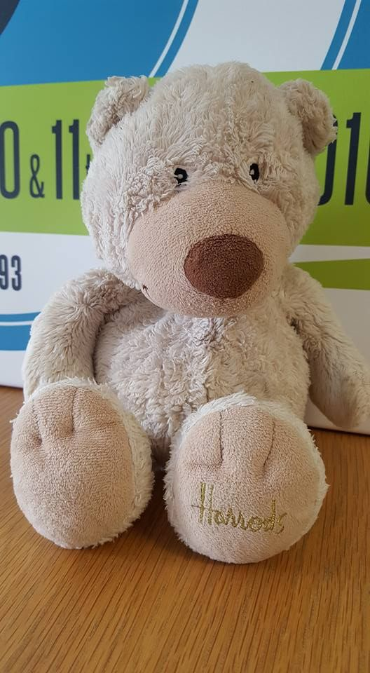 This little fella was found yesterday at the Royal Cornwall show. Does he belong to you? If you have any information please get in touch, thank you.