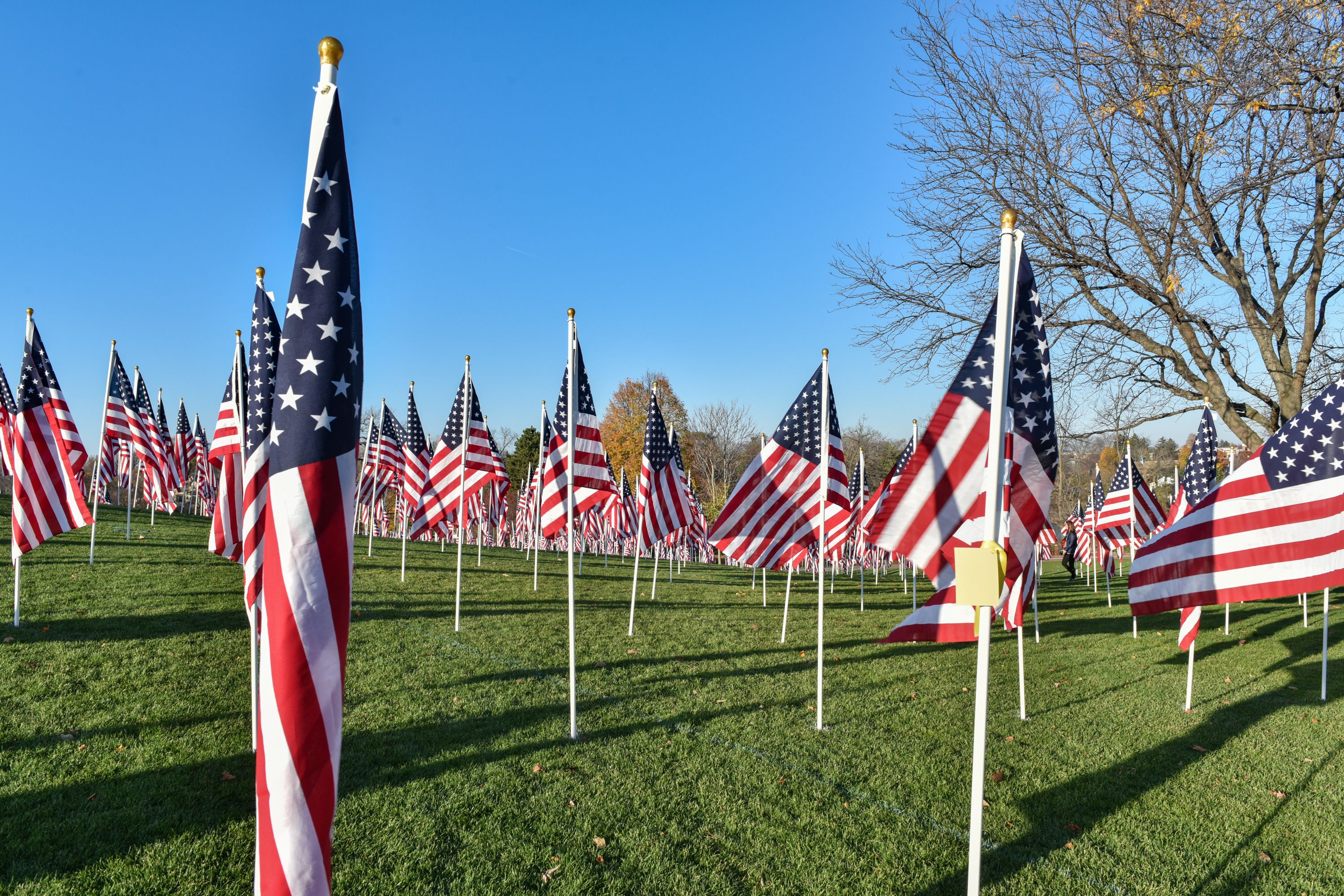 Field of honor get a framed print with quotes 815439