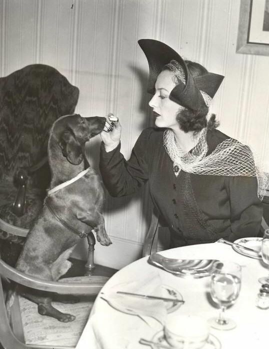 Woman with tiny dog teaching table manners.  LIKE THAT MAKES SENSE.