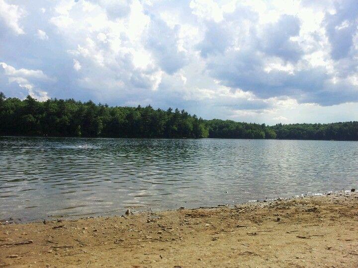 Summer @ Walden Pond