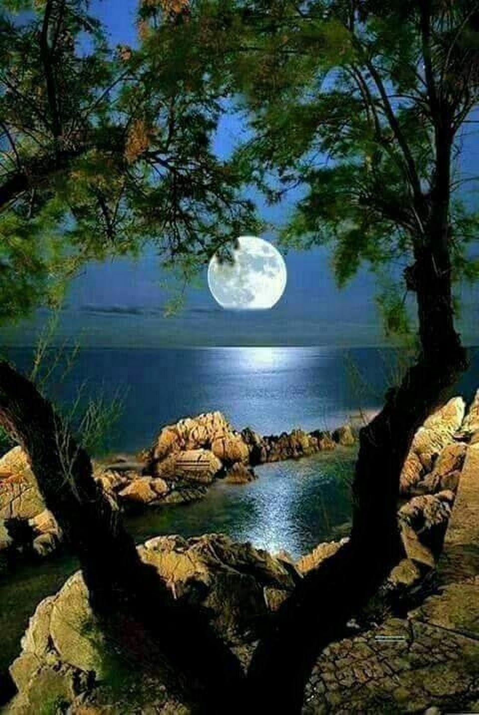 AU CLAIR DE LUNE * ' ' ' ' | Photo paysage magnifique, Photos paysage, Clair  de lune
